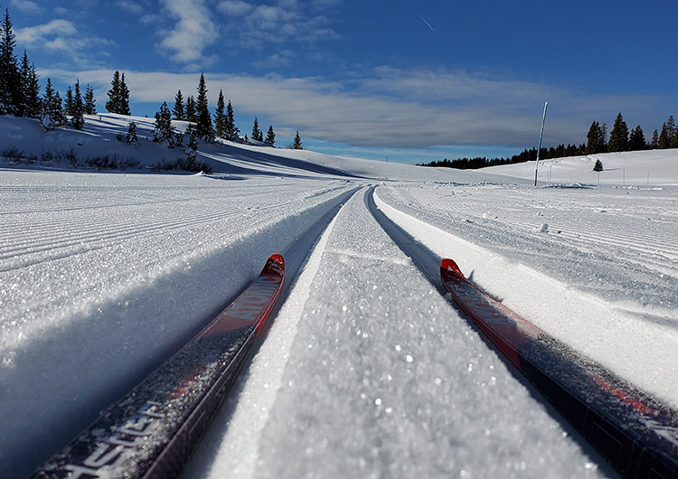 Classic and skate skiing tracks are groomed to perfection on Grand Mesa with a world-class groomer, PistenBully 400.
