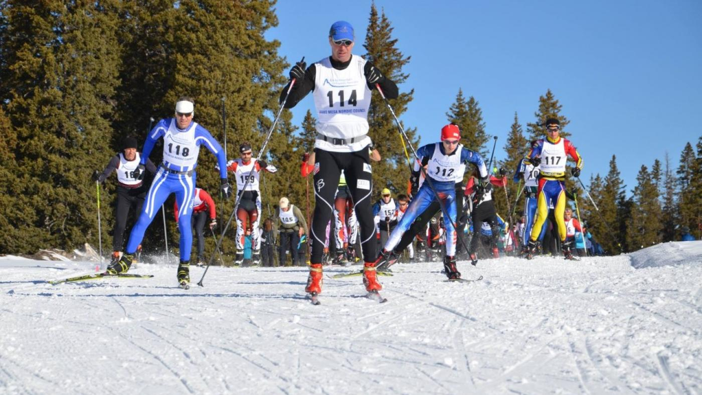 picture of cross country ski racers