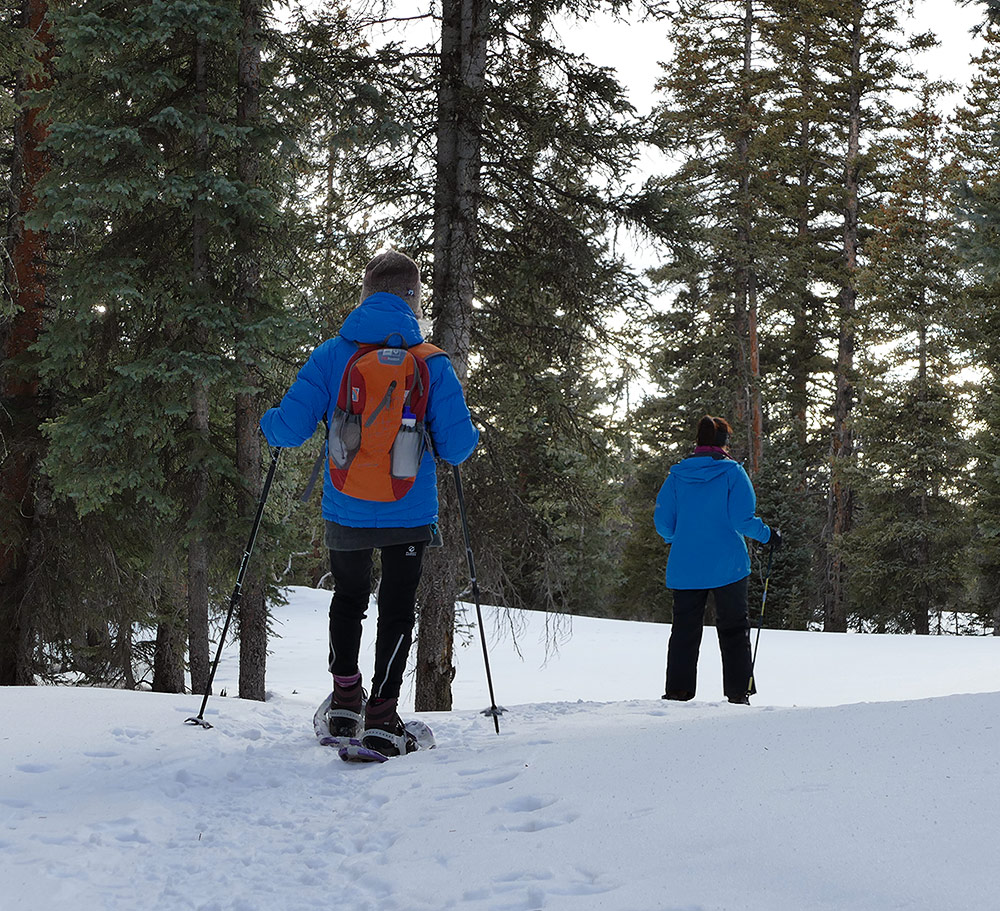 Snowshoeing on Grand Mesa