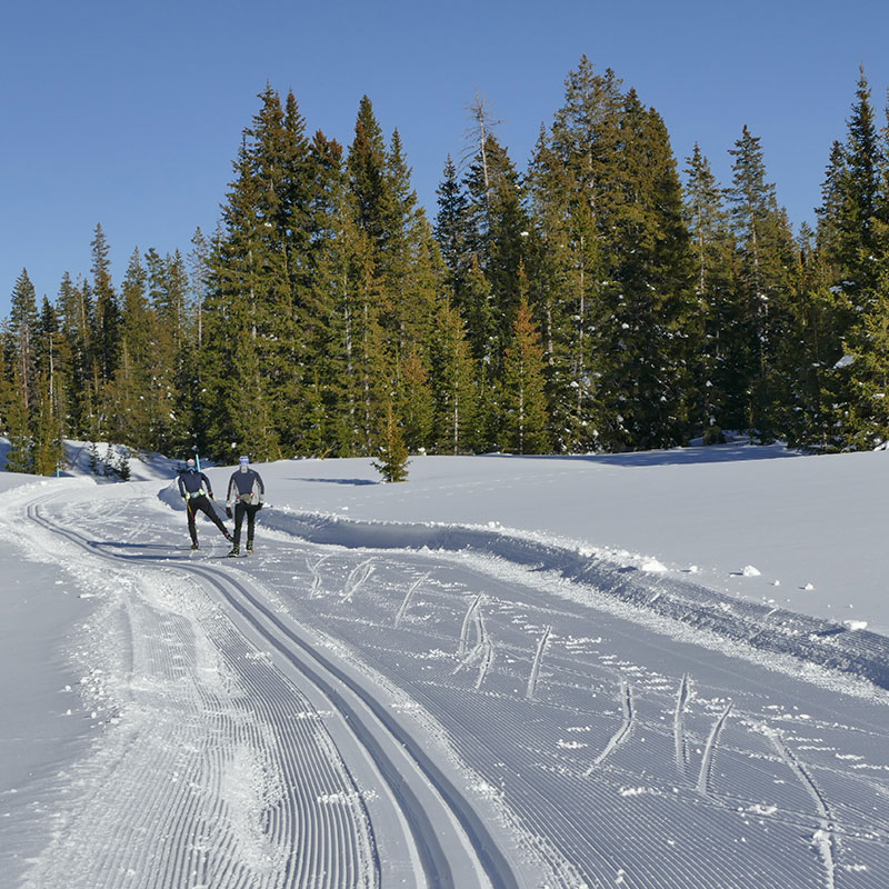 Cross country ski trails on Grand Mesa